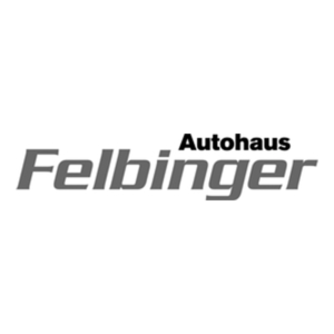 LOGO 800 Felbinger