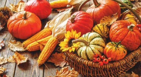 Herbstfest in der Schmiedleithen
