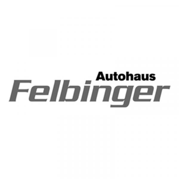 LOGO-800-Felbinger